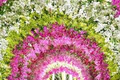 Фотообои Цветущий сад Московская Обойная Фабрика 1028-M