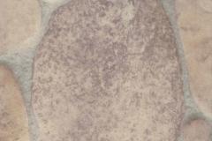 Линолеум IVC Victoria Cardiff 532