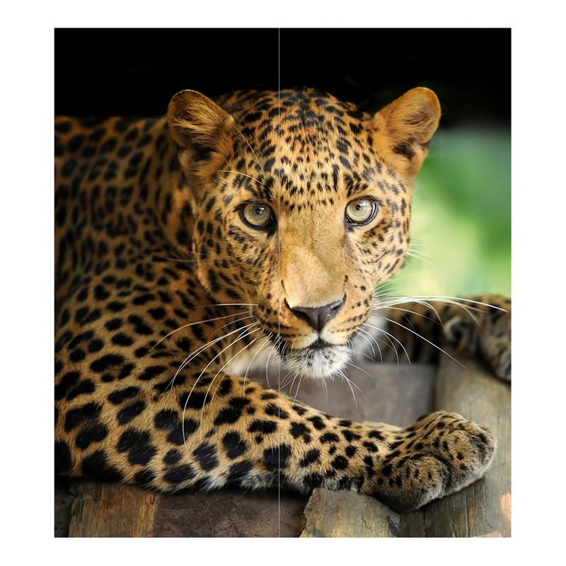 Фотопанно OVK-Design 140119 Взгляд хищника