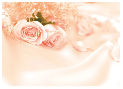 Фотообои «Запах роз» 280х200 см в Леруа Мерлен