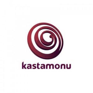 Ламинат Kastamonu логотип